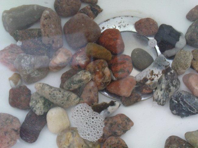 und das sind meine ostsee steine heimische steine mineralien eigenfunde heilsteine. Black Bedroom Furniture Sets. Home Design Ideas